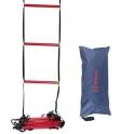 wilson - ladder