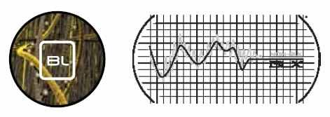 src=/userfiles/4ba980c7-83f5-4c7e-b1da-e1e9ebd1aa0e/Image/basalt.JPG